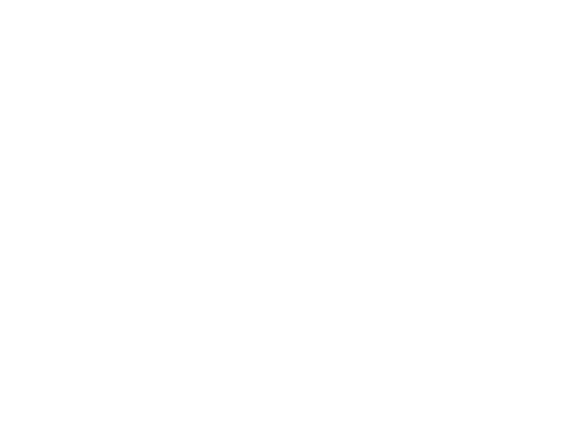 Brown International